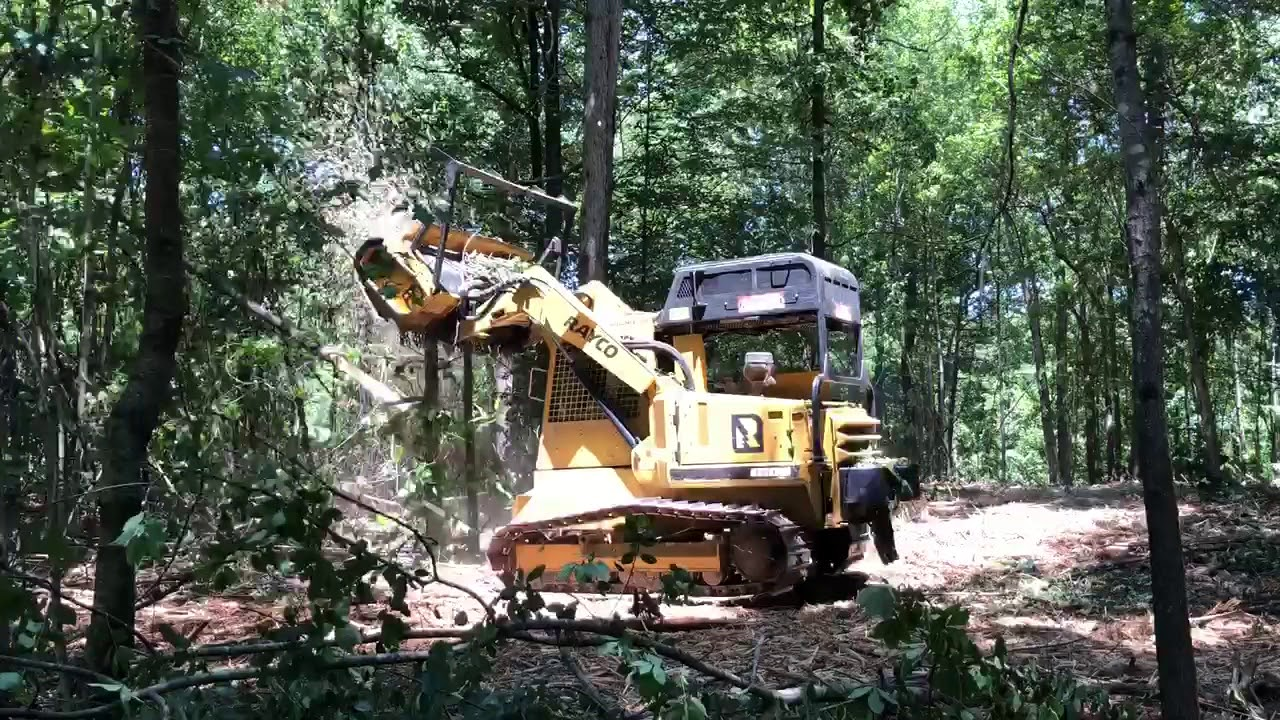 forestry mulching contractors